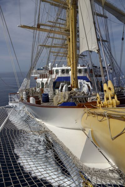 royalclipper_012