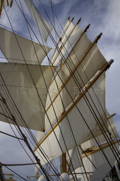 royalclipper_015