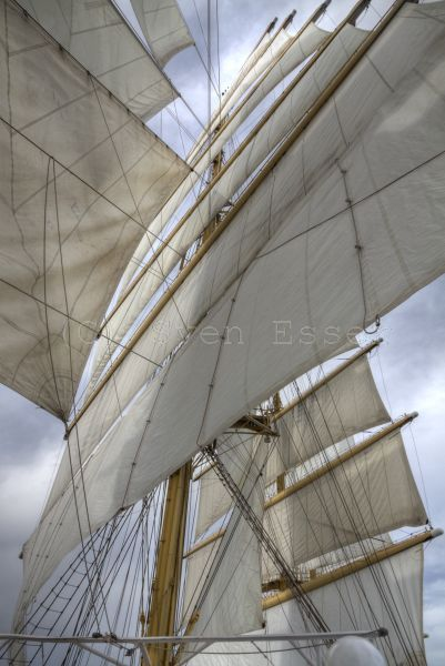 royalclipper_016