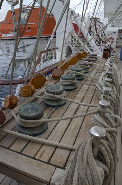 royalclipper_020