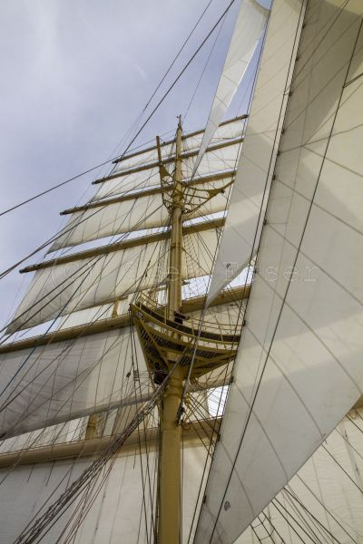 royalclipper_022