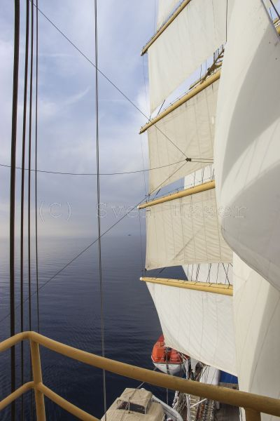 royalclipper_023