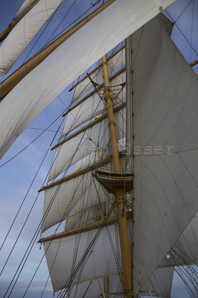royalclipper_033