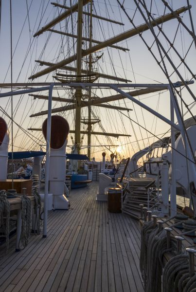 royalclipper_113