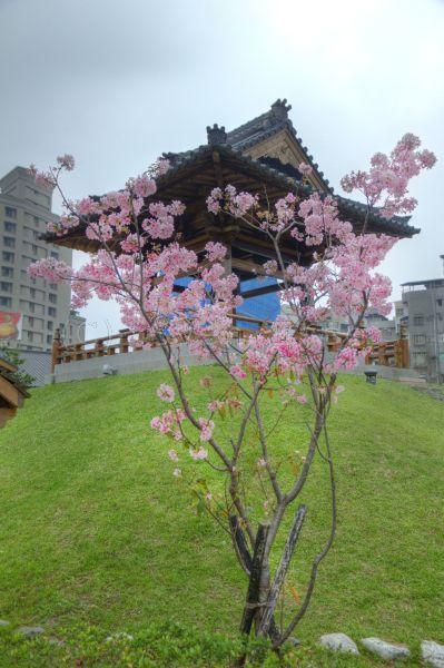 taiwan_035